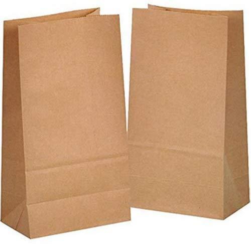 100 Stück kraftpapiertüten,Braune Papiertüten,Papiertüten,Geschenktüten für Snack zum Mitnehmen Brot zum Mittagessen Recycling-Kraftpapiertüte(Groß)