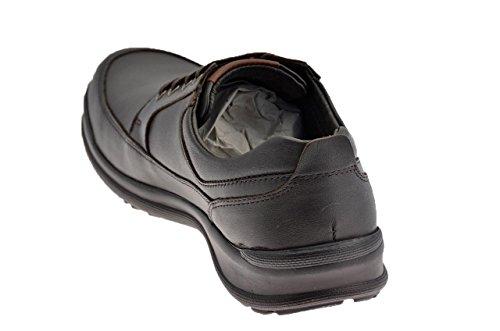 Lumberjack , Chaussures de ville à lacets pour homme Brun