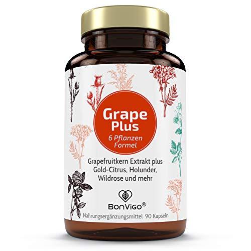 GRAPEFRUITKERNEXTRAKT PLUS ** Einführungspreis ** GKE verstärkt durch 6-Pflanzen-Formel: plus Bioflavonoide von Cranberry, Holunder, Heidelbeere, Hagebutte, Gold-Citrus - Vegane BonVigo Qualität -