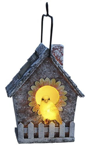 Best Season 477-91 LED-Solar-Vogelhaus, 23 x 13,5 cm, 2 warm weiß LED mit Solarpanel inklusive Akku, outdoor, Vierfarb-Karton