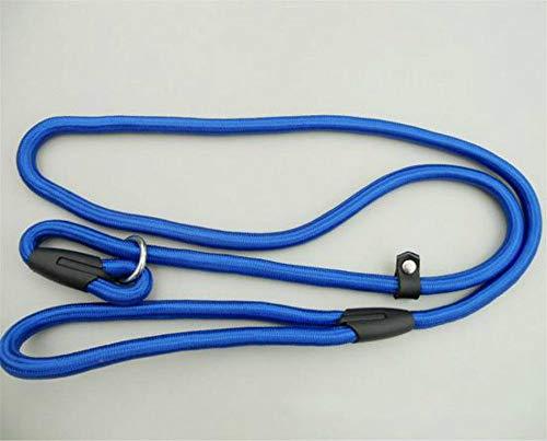 Nylon Hundetraining Leine Hunde P Kette Slip Collar Walking führt Seil für kleine mittlere Rassen Chihuahua Teddy, blau, 0,6 X 130 cm -