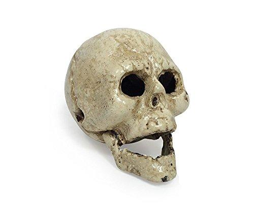 zeitzone Flaschenöffner Totenkopf Schädel Gusseisen Weiß Halloween Gothic Antik-Stil