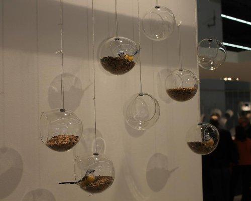Eva Solo 571032 Vogelfutterkugel, 2er Set, Glas, 11 x 12 cm, Mit Aufhängung - 3