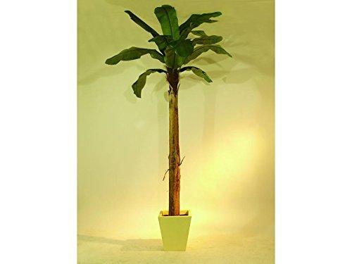 EUROPALMS Bananenbaum 13 Blätter 270cm, Kunstpflanze