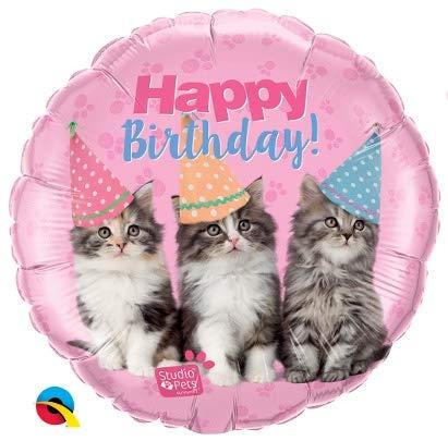Ballon - Happy Birthday Kätzchen Studio Pets - Geburtstag Deko - geeignet zur befüllung mit Helium Gas oder Luft - Europäische Premiumqualität ()
