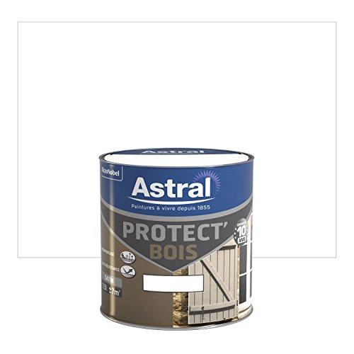 astral-5120556-protectbois-05-l-satin-blanc