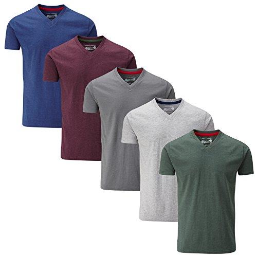 Charles Wilson 5er Packung Einfarbige T-Shirts mit V-Ausschnitt (Medium, Ergänzungen)