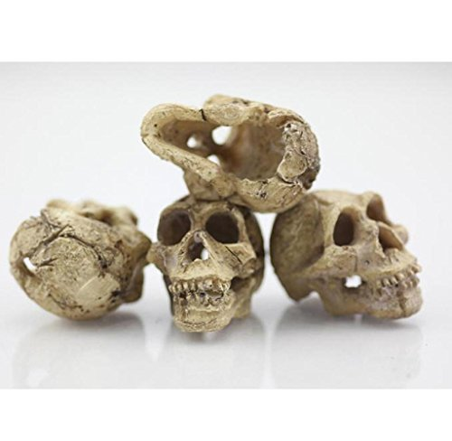 Ularma Halloween Aquarium Decorative Resin Skull Crawler Dragon Lizards Decoration 1