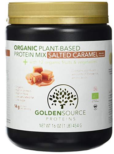 Golden Source Proteins Organisches Proteinpulver auf pflanzlicher Basis, Salted Caramel, 454g -
