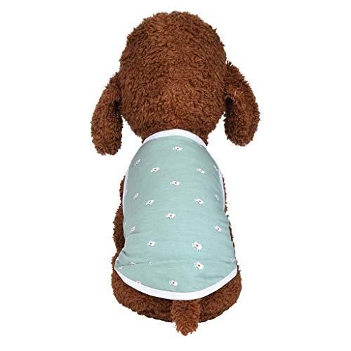 Kostüm Hunde Elefant - Smniao Haustier Hemd Sweatshirt für kleine Hunde Weste Nettes Mini Elefant Muster Printed Hund Katze Kostüm Welpen Kleidung Shirt (XS, Grün)