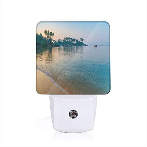 Orning Sun Rays And Palm Trees On The Edge Of Summer Beach Relax Calm Theme Plug-in LED Night Light Lamp with Dusk to Dawn Sensor, Night Home Decor Bed Lamp