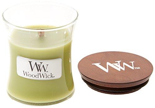 Woodwick Fern Kleine Kerze, Glas, Grün, 7x 7x 7,8cm -