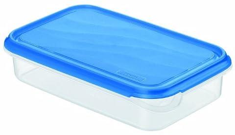 Rotho 1713906644 Frischhaltedose Rondo rechteckig aus Kunststoff PP, BPA-frei, hochwertig, geeignet für Spülmaschine und Gefrierschrank,1 L, circa 24 x 16 x 5,3 cm, transparent / blau
