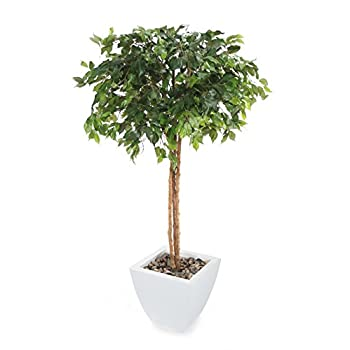 Closer2Nature Artificial 5ft Danielle Weeping Fig Tree - Portofino Planter Not Included