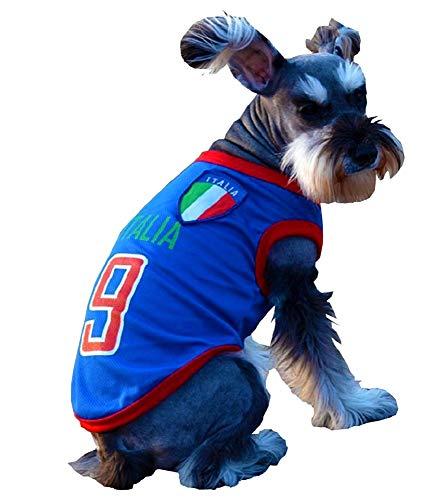 EVRYLON Kostüm für Tiere, Fußball, Microbista Ultra Italien Hund XXL Verkleidung Halloween Cosplay Weihnachten oder Geburtstag (Große Rasse Hunde Weihnachten Kostüm)