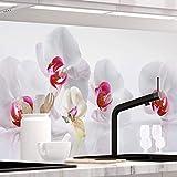 StickerProfis Küchenrückwand selbstklebend - ORCHIDEEN Ensemble - 1.5mm, Versteift, alle Untergründe, Hart PET Material, Premium 60 x 280cm