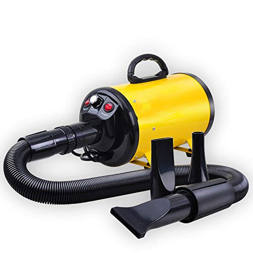 CWCFJ Máquina De Soplado para Mascotas Secador De Pelo De Perro De Gran Potencia Secador De Pelo De Perro Grande,Yellow