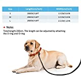 Petcomer Smart 7 in 1 Multifunktions-Hundeleine Heavy Duty Einstellbare Durable Nylon 3M Reflektierende Material Hands Free Walking Training Laufen Leine für 2 Hunde (L:1″ Width,3.6Ft-6.6Ft, Grün) - 2