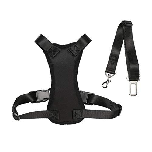 Puppy Pettorina di Sicurezza for Cani, Imbracatura Regolabile for Auto Viaggio Cintura con Clip for Cintura Auto, Guinzaglio Cintura di Sicurezza (Size : M)