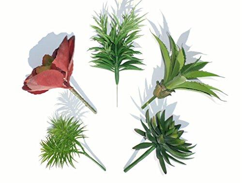 Neuhaus Decor Ensemble De 5 Différentes Plantes Succulentes, Cactus Artificiels