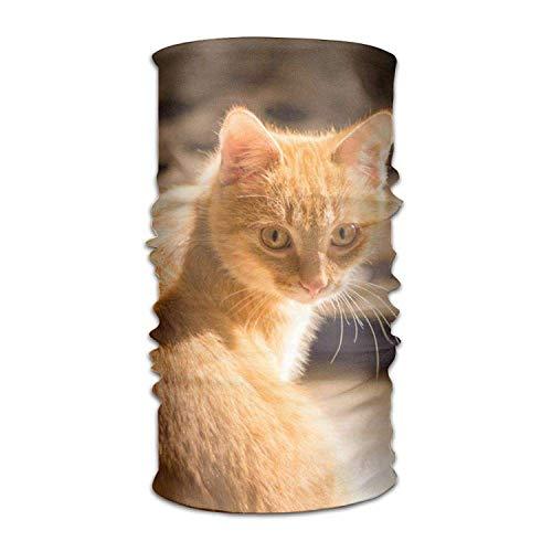 Osmykqe Headwear Multifunctional Sweatband Cat Kitten Kitty Pet Face Mask Scarf Bandana Head Wrap Liner -