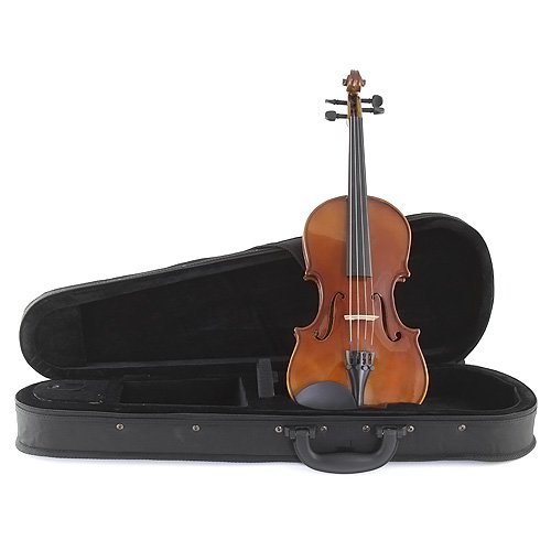 Stagg 25013233 VN-1/2 1/2 Standard Violin Soft Hülle
