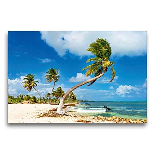 Calvendo Premium Textil-Leinwand 75 cm x 50 cm quer, EIN kleines Boot ankert vor einem traumhaften Palmenstrand an der Costa Maya | Wandbild, Bild auf Maya, Quintana Roo, Mexiko Orte Orte
