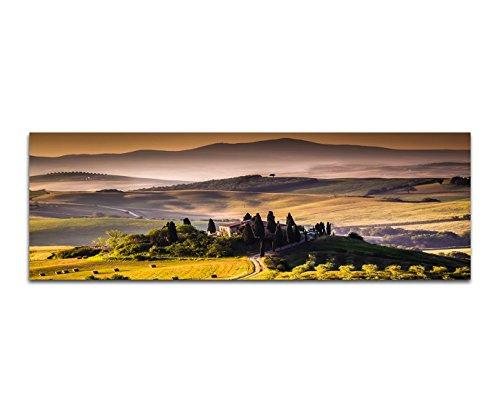 Paul Sinus Art Bilder Wand Bild - Kunstdruck 120x40cm Italien Toskana Landschaft Weinberge