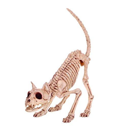 Gegenstände Haunted Haus Simulierte Katze Schädel Knochen Rahmen Horror Bar Requisiten (Tasche Von Knochen Halloween Requisiten)