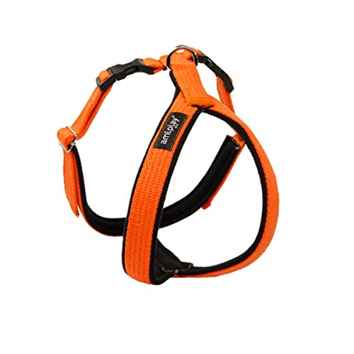A-PLAY COTTON AHGSC Regulierbares Brustgeschirr Hundebrustgeschirr Hunde Öko (XXL(62x69-93cm), Orange)