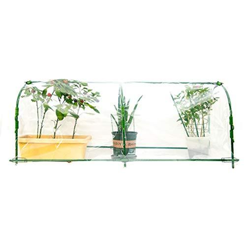 Miniserre serra da giardino balcone tunnel in serra per esterni - grande tunnel in pe trasparente struttura in acciaio green house, dimensioni facoltativo (dimensioni : 120×40×50cm)