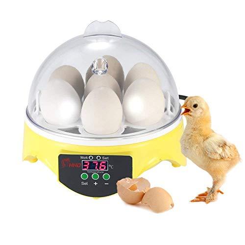 Chidi Toy Inkubatoren für Geflügeleier, 7 Eier Digital Inkubator Automatische Brutmaschine Brutkasten mit Temperaturkontrolle für Huhn Ente Gans Vogel Truthahn -