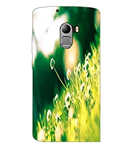 PrintDhaba Flowers D-2302 Back Case Cover for LENOVO K4 NOTE A7010a48 (Multi-Coloured)