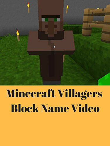 Minecraft Villagers Block Name Video [OV]