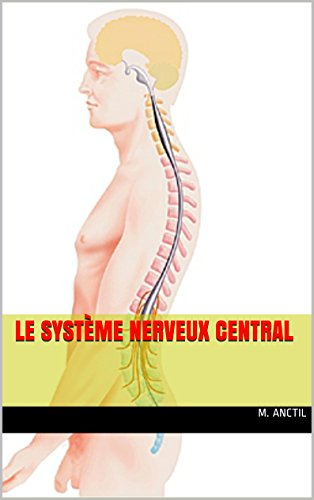 Le systme nerveux central