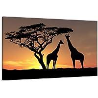 Cuadro en Lienzo 80 x 60 cm Nr. 4034 África enmarcado y listo para colgar, calidad de la marca Visario