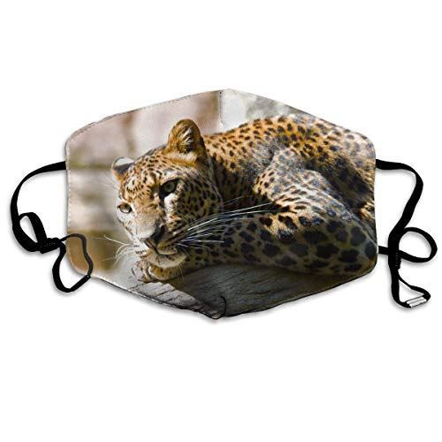 Xdevrbk Unisex Lazy Leopard Mouth Mask/Antibacterial Mask - Lazy Leopard