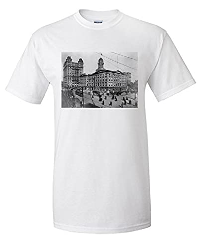 Brooklyn Borough Hall New York City, NY Photo (Premium T-Shirt)