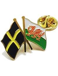 Ukraine Friendship Pin Badge wb210 Wales