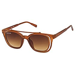 Danny Daze Wayfarer Sunglass (Brown)(D-026-C2)