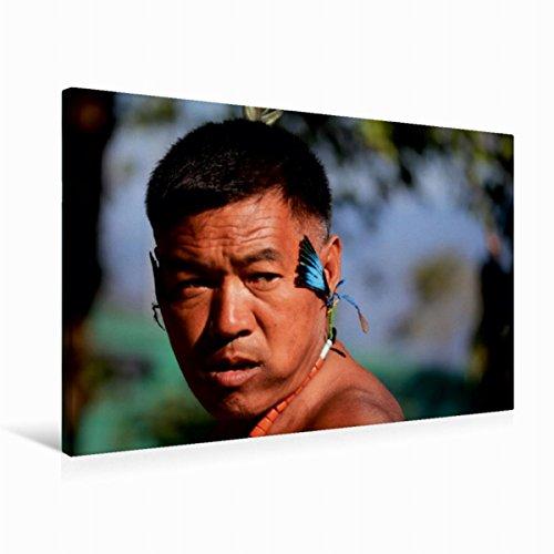 Premium Textil-Leinwand 75 x 50 cm Quer-Format Angami   Wandbild, HD-Bild auf Keilrahmen, Fertigbild auf hochwertigem Vlies, Leinwanddruck von Bernd ()