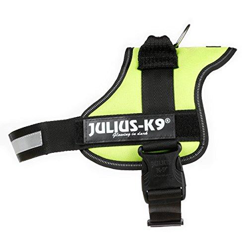 Julius-K9, 162KW-0, K9-Powergeschirr, Größe: 0, kiwi