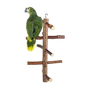 HEEPDD Perchoir à Oiseaux, écorce en Bois Naturel Rotatif pour perroquets, perruches, cacatoès, Conures