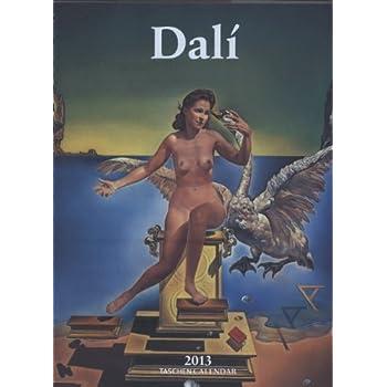 DR-13 DALI