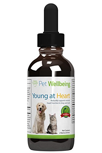 young-at-heart-herbal-supplement-for-cats-and-dogs-with-heart-disease-2-oz-59ml-liquid-bottle
