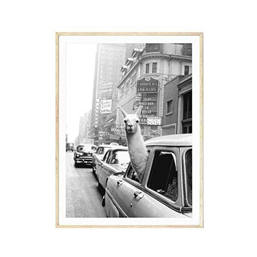 Ingrirt5Dulles Vintage Alpaka Poster Leinwand Malerei Wandkunst Bild Wohnzimmer Wohnkultur/geeignet für Schlafzimmer/Wohnzimmer/Hotel/Restaurant 50 * 70cm -