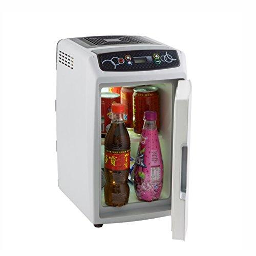 LT&NT Réfrigérateur de Voiture 12L Mini Chauffage et de la Boîte de Refroidissement du Véhicule à la Maison Portable Voyage Réfrigérateur 12V/220V, Gris