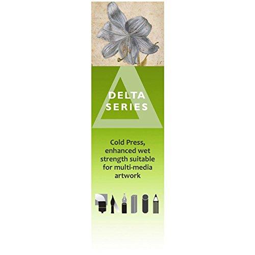 Stillman & Birn Delta - Zeichenpapier - Kaltgepresst - 56 cm x 76 - Stillman Birn-delta And