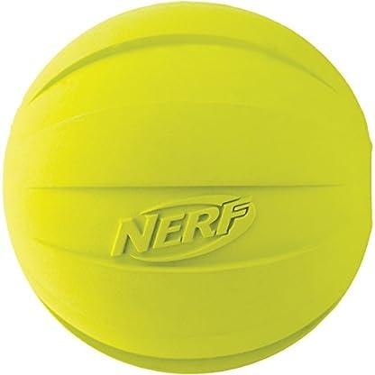 Nerf Dog Squeak Ball, 4.25-Inch, Red 1
