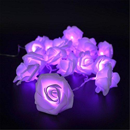 luce-della-stringa-di-2m-20-fiore-della-rosa-ledlampada-angtuo-fata-per-il-giardino-matrimoni-festiv